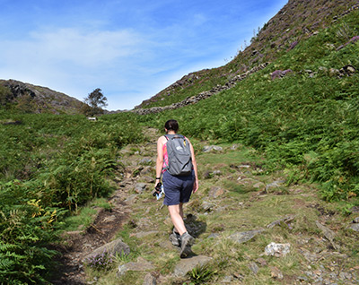 Local walks in Snowdonia, Llyn Peninsula and Anglesey